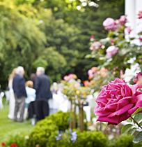 Napa Valley wedding ceremony at Churchill Manor
