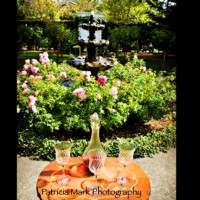Weddings at Churchill Manor