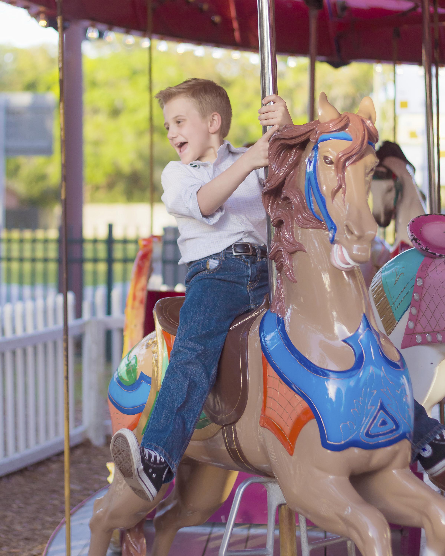 napa valley county fair