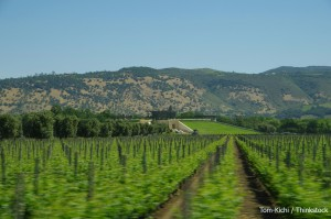 San Francisco to Napa Valley Tours