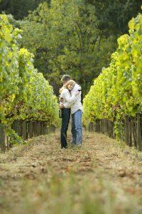 Couple hugging in vineyard, Napa Valley, California, USA
