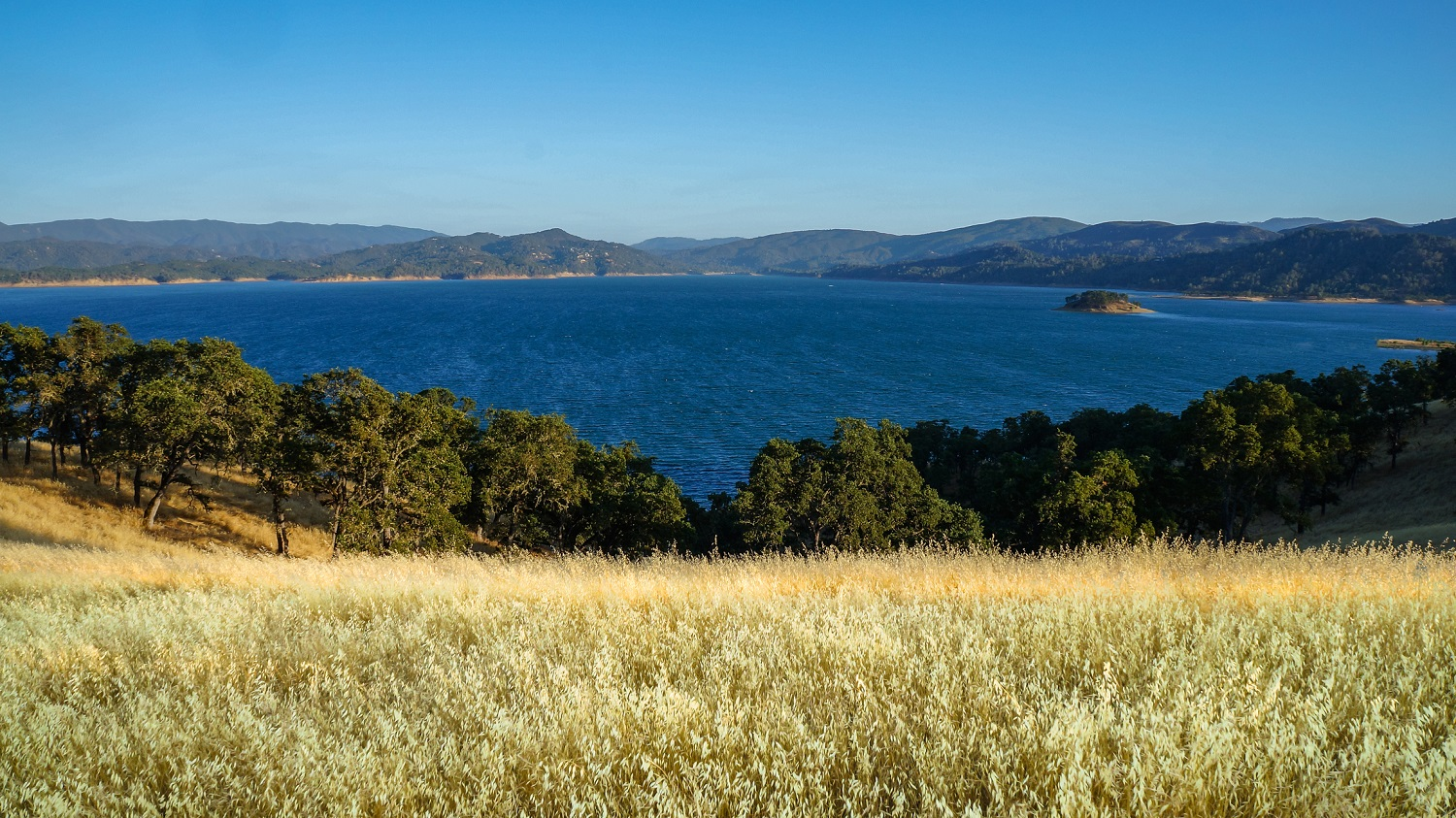 Put your physical and mental strength to the test at the for Lake berryessa fishing