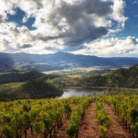 The scenic Howell Mountain is one of 16 Napa Valley Appellations